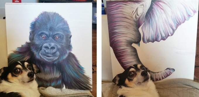 Ziggy the dog posing with Baby Gorilla and the beginnings of Elephant