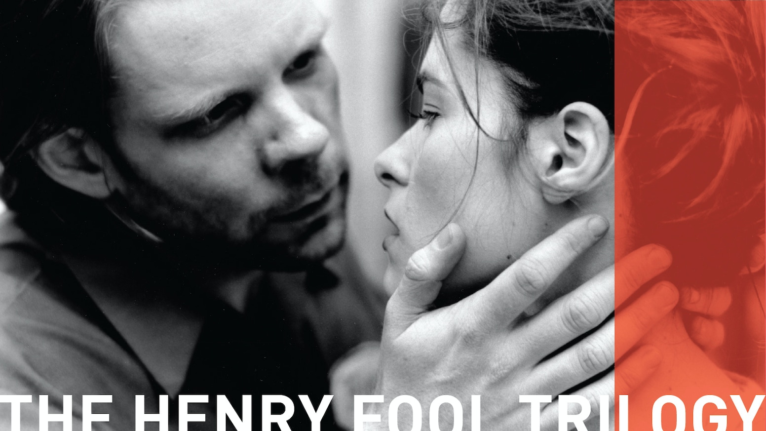 HENRY FOOL, FAY GRIM, and NED RIFLE together for the first time, subtitled in French, German, Spanish, Japanese and (even) English.