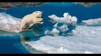 The Last of the Great White Bears - Paul Nicklen