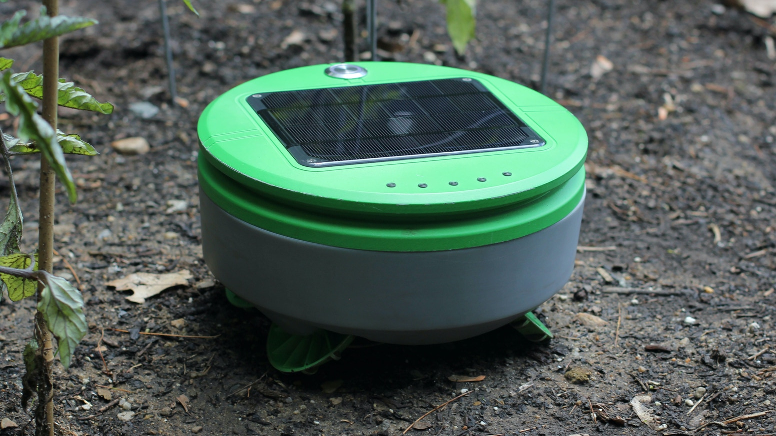 Weatherproof and self-charging, Tertill lives in your vegetable or flower garden and takes
