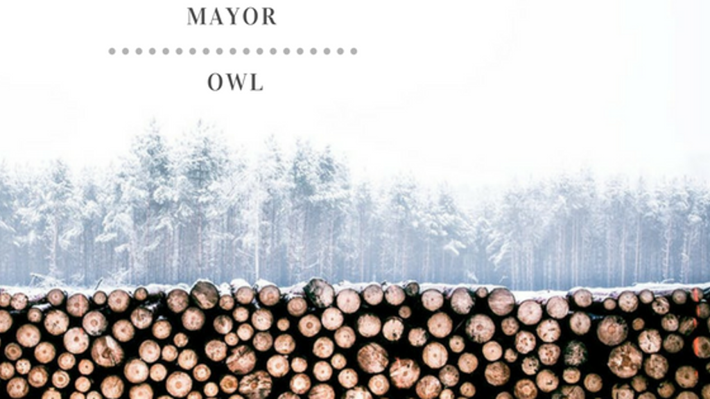 Mayor Owl Debut Full Length Album, Release and Promotion!!! project video thumbnail
