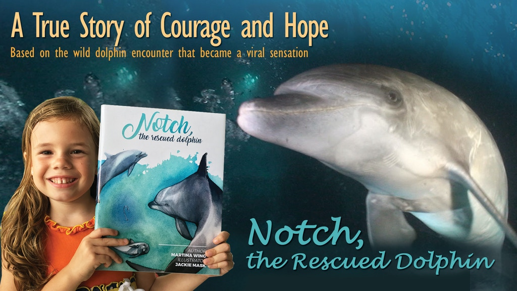 Notch, The Rescued Dolphin - Your Child's New Favorite Book project video thumbnail