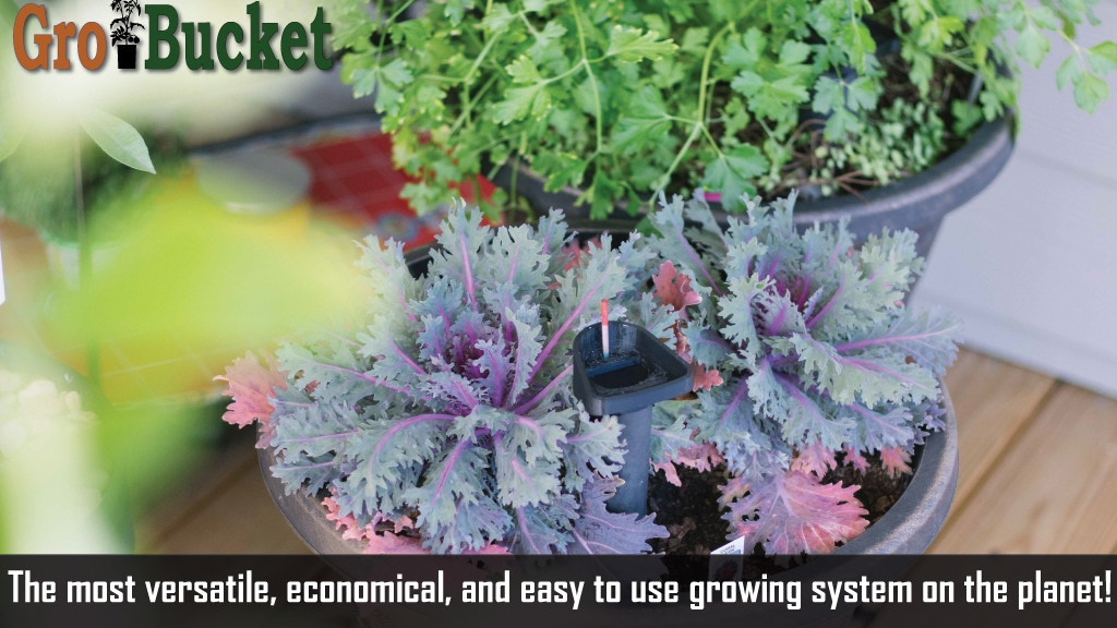 You don't need a Green Thumb, you just need the GroBucket. project video thumbnail