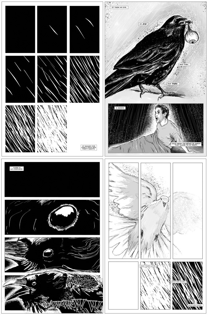 The Raven and the Dove get the rainy day blues in the flood story - The Black and White Rainbow