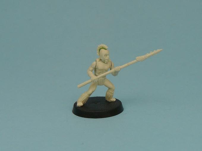 Hawaiian Spearman