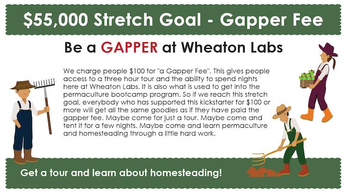 permaculture design course stream - gapper stretch goal