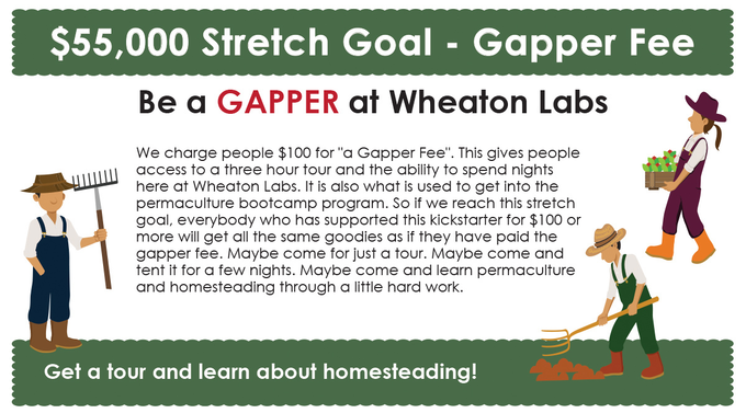 permaculture design course stream - gapper stretch goal