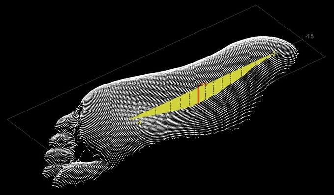 Each white dot is a XYZ points measured.  A cross sectional line is calculated (yellow color) to show foot arch