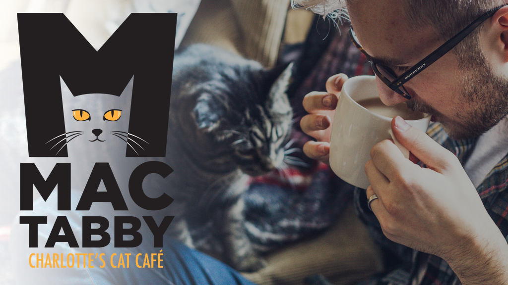 Charlotte's Cat Cafe - Mac Tabby, LLC project video thumbnail