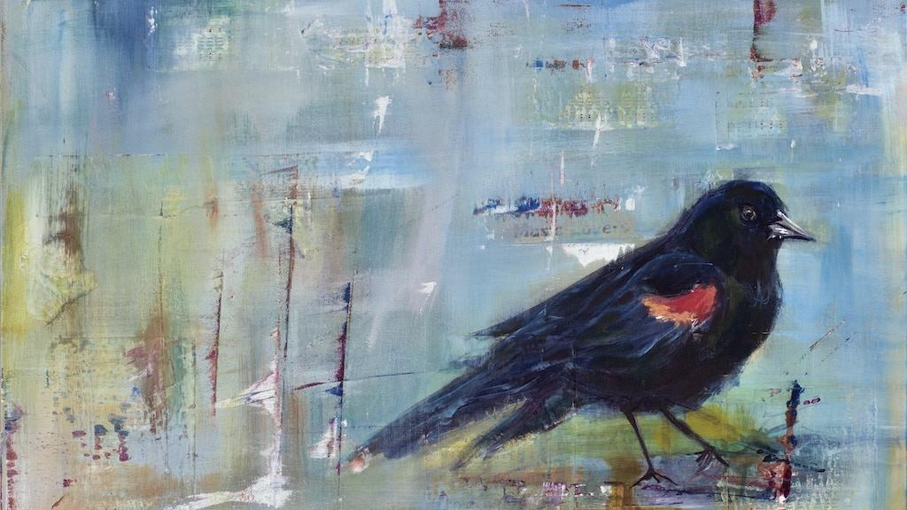 Kathy Mattea - Pretty Bird Album project video thumbnail