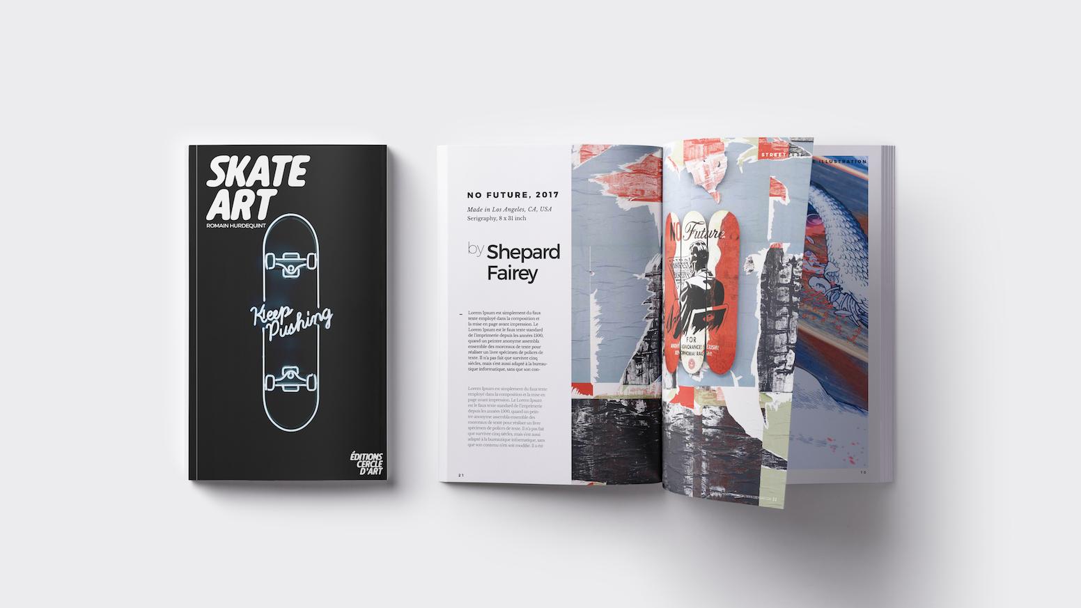 Skate Art Art Illustration Design Broken Boards By