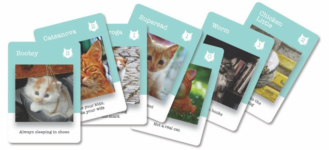 Select Cat Card Examples