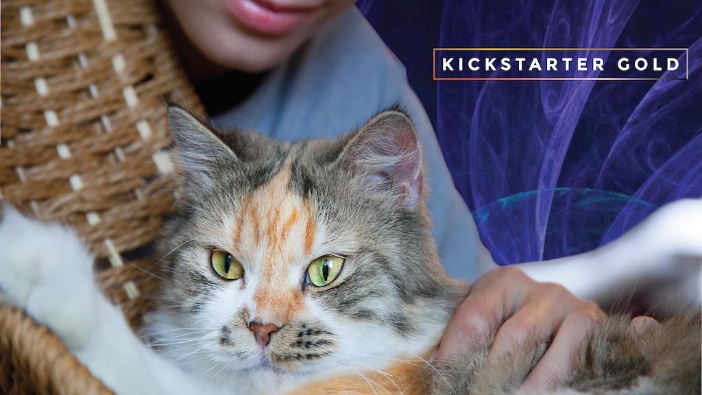 Kickstarter Gold: MusicforCats Album Two Music to Share project video thumbnail