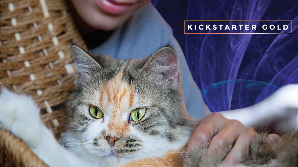 Kickstarter Gold: MusicforCats Album Two Music to Share project video thumbnail