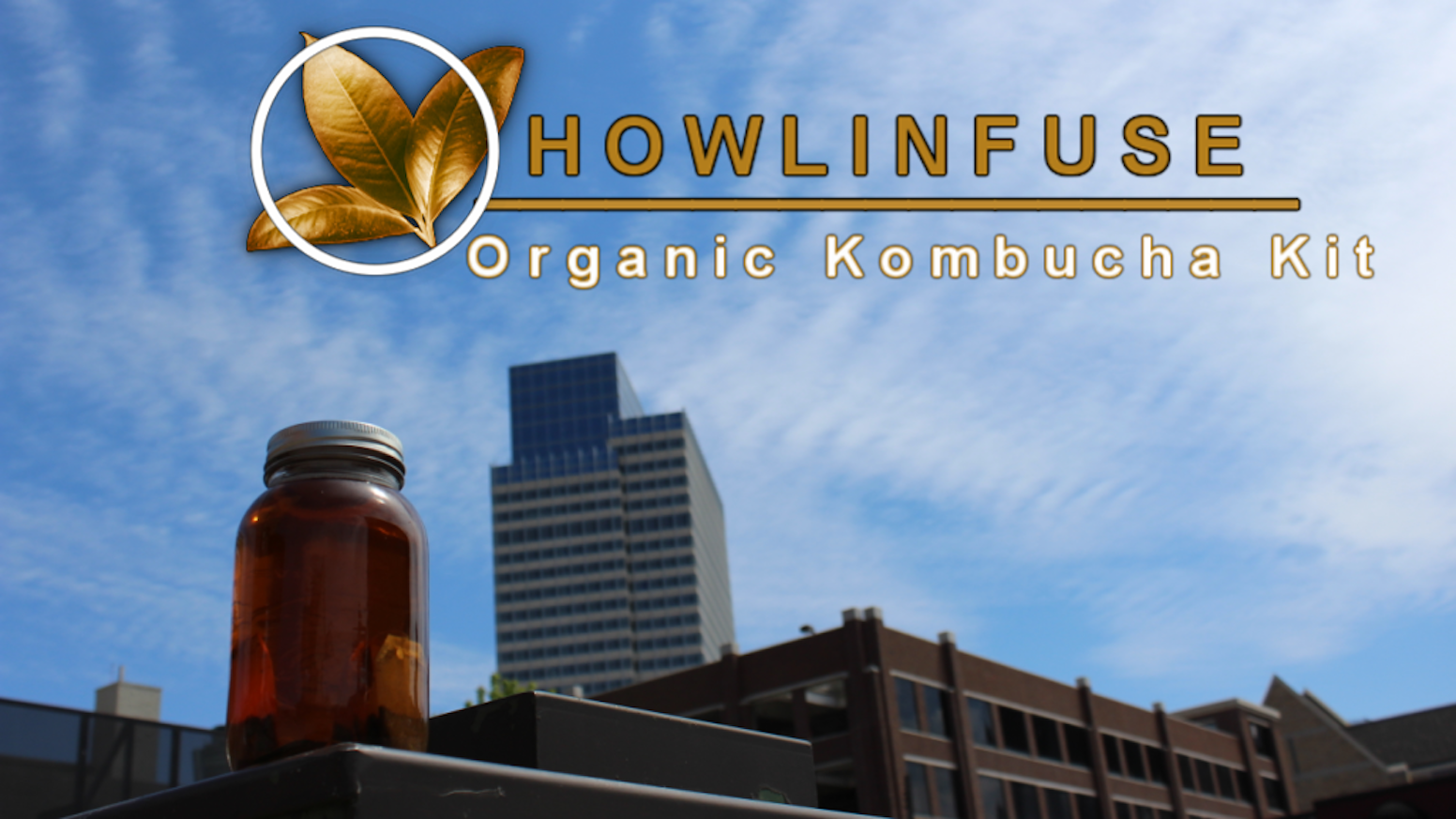 A Certified Organic Kombucha Tea Kit - monthly, you will use organic ingredients and tools to brew at home with extra wholesome goodies