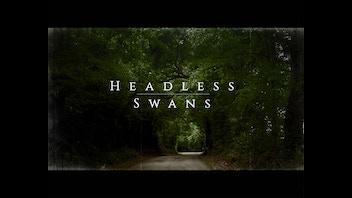 Headless Swans - Neo Noir Short Film