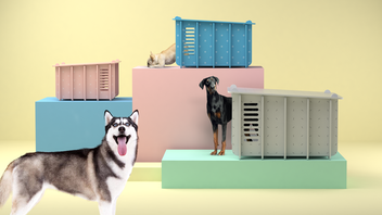 Barkitecture: The First Affordable Designer Dog House