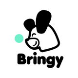Bringy Team