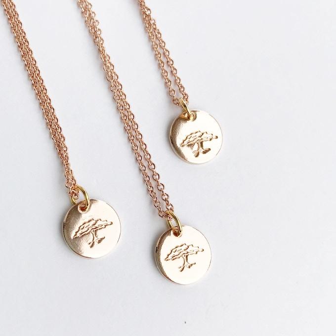 The Haumeya Beech Tree Necklace