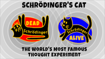 Shrödinger's Cat - Enamel Pins - is it Dead or Alive?