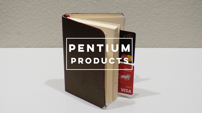 This pocket-sized product features a quarterly planner, lined pages for notes or doodling, and convenient storage for cash and cards!