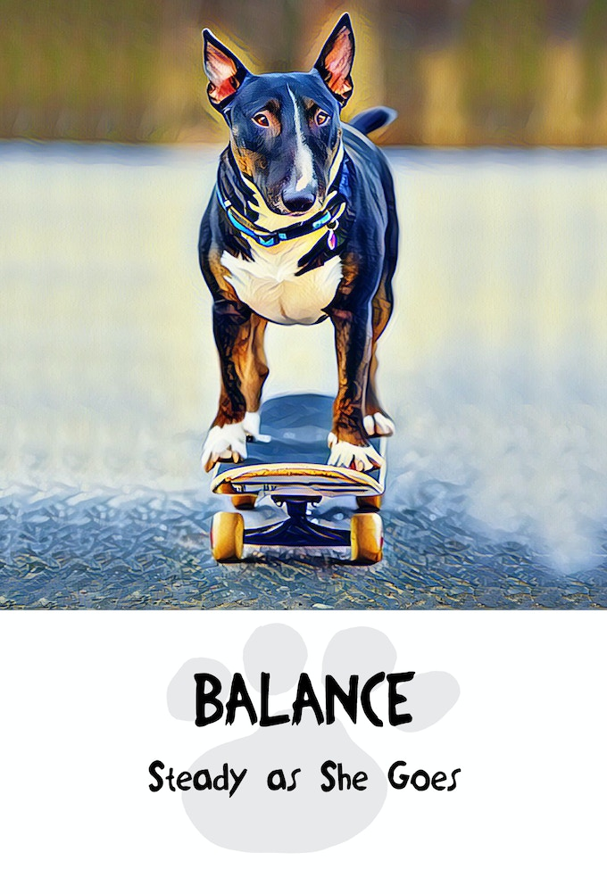 Balance from Divine Dog Wisdom Deck, Copyright 2017, All Rights Reserved