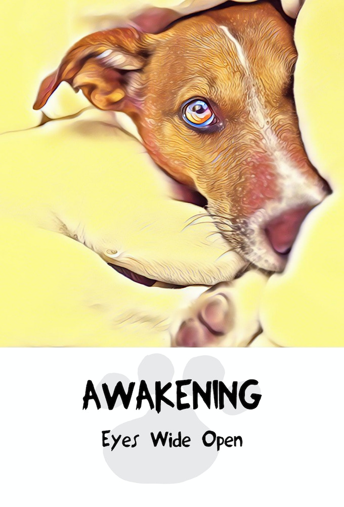 Awakening Card from Divine Dog Wisdom Deck, Copyright 2017, All Rights Reserved.