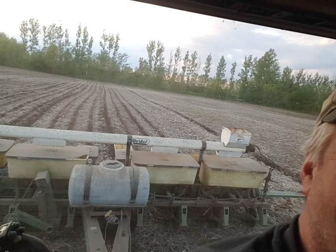 Planting the corn field for Indomptable in May 2017