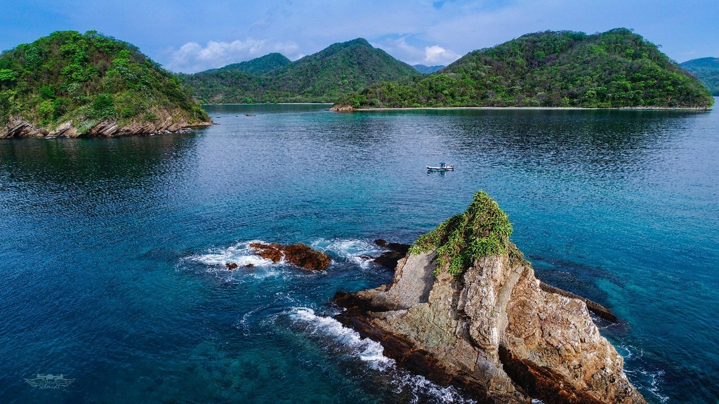 Save Coral Reefs: Costa Rica Calling project video thumbnail