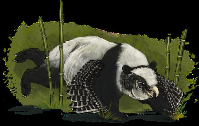 panda owlbear