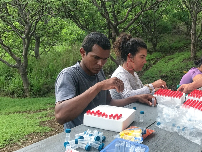 Gilberth and Tatiana processing coral samples on Isla San Jose, Sector Marino. ACG