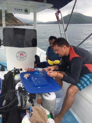 Christian and Minor preparing sample bags for coral, Sector Marino. ACG May 2017