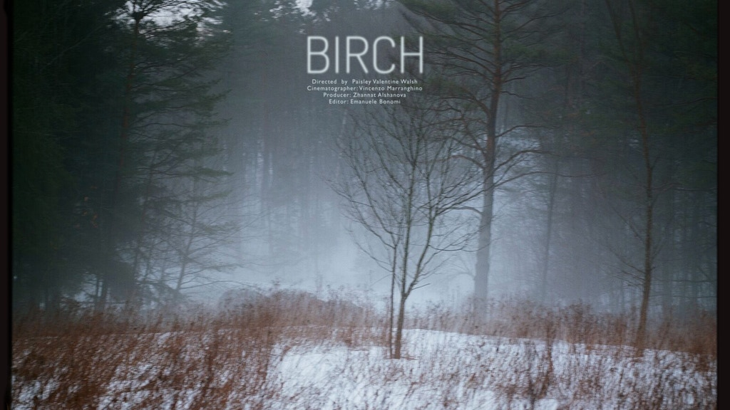 """""""Birch"""" A 16mm Short Film Shot in Vermont project video thumbnail"""