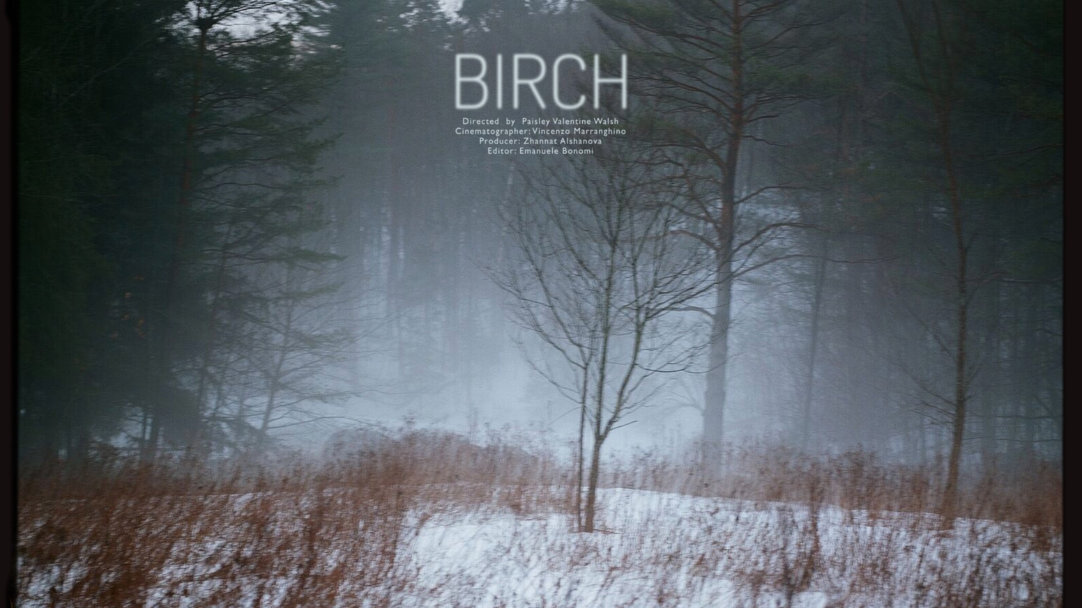 """""""Birch"""" is an investigation of memory, set in the backwoods of Vermont, shot through the coldest days of winter."""