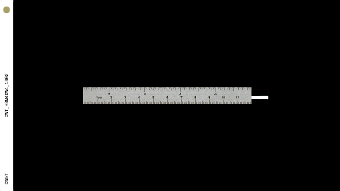 Pen Type-A : Classic (with imperial and metric ruler)