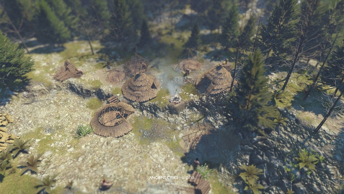 Woodcutting camp in the middle of the forest.