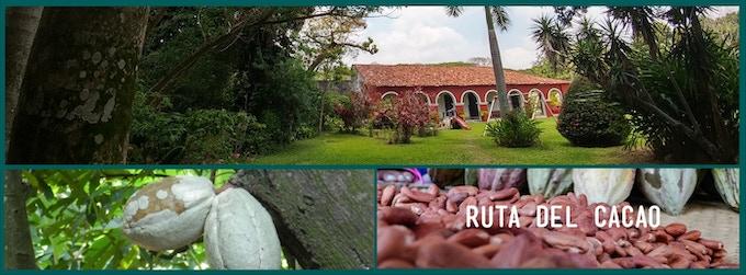 Lugares para la nueva Ruta del Cacao