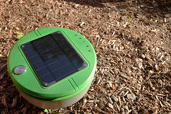 Solar Powered Weed Control