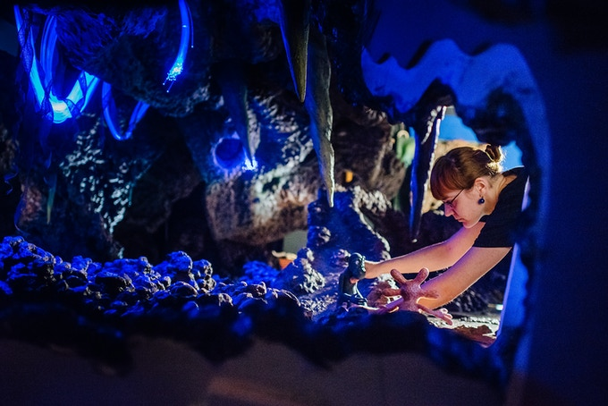 Olivie, one of the animators, setting up the cave shot.
