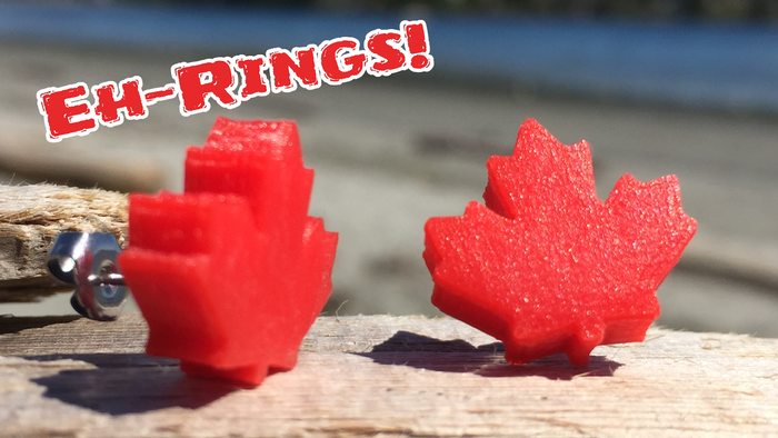 Thank you to all of our supporters for bringing the 'Eh-Rings!' project to life!