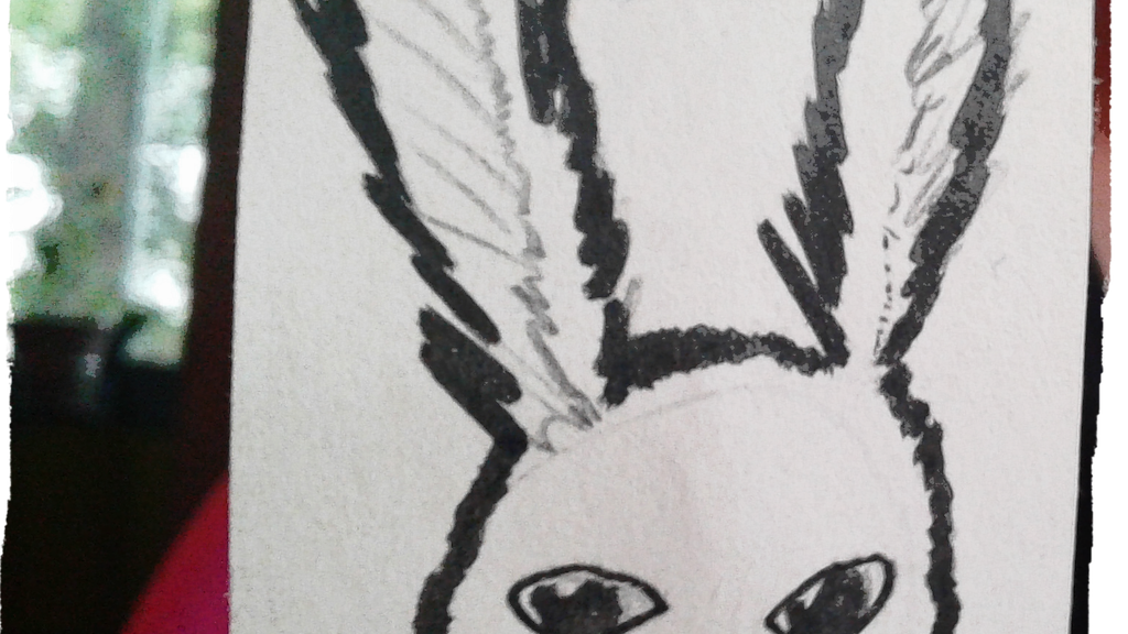 Jace's First Novel: Jinx the Rabbit project video thumbnail