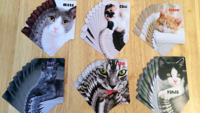 The 6 sets of Scoring Cats
