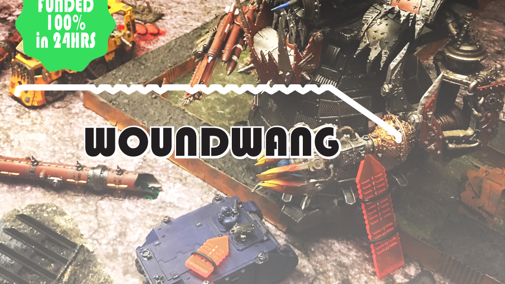 WoundWang project video thumbnail