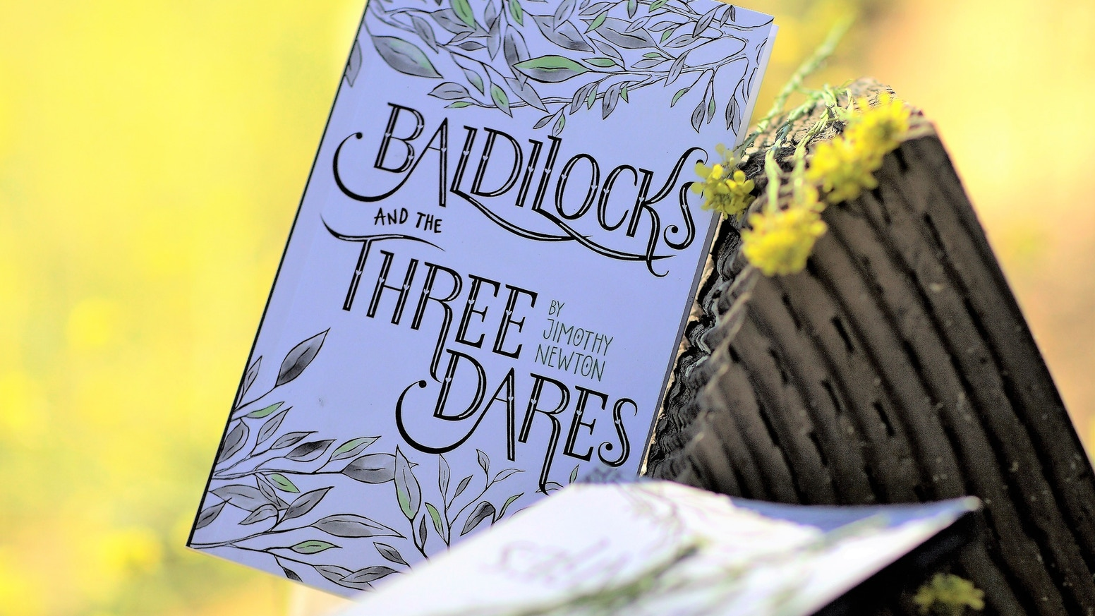 Baldilocks And The Three Dares Book Launch And Tour By Jim Hawley