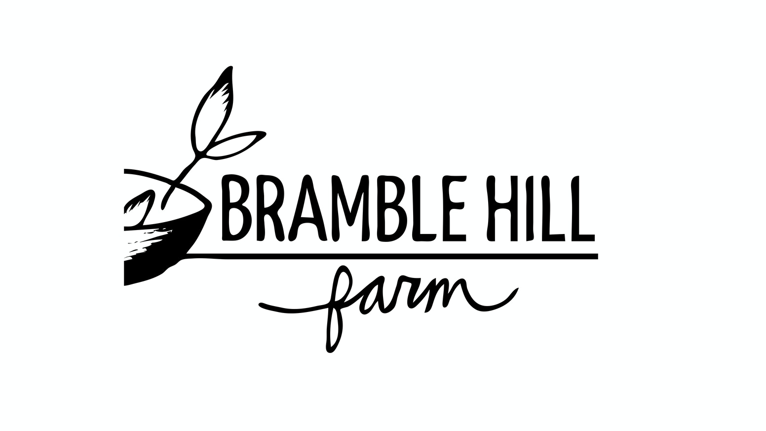 Bramble Hill Farm year-round salad production! by Cathy