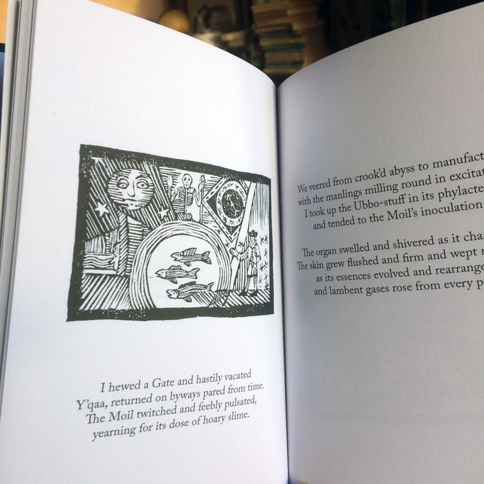 Evoking the illustrated chapbooks of the 17th Century, The Arte Mephitic is a dark tale of the Lovecraftian Mythos, told in verse.