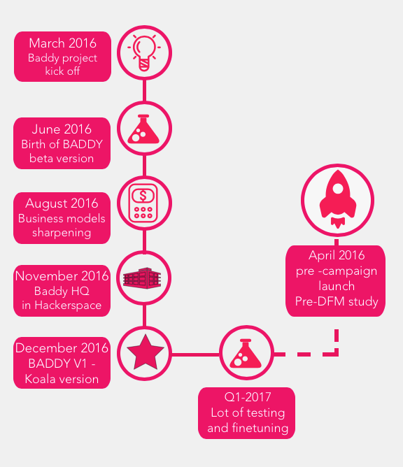 BADDY project timeline
