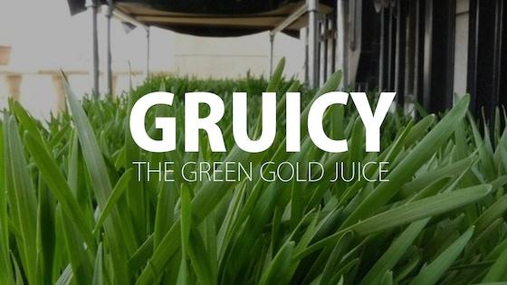 Gruicy