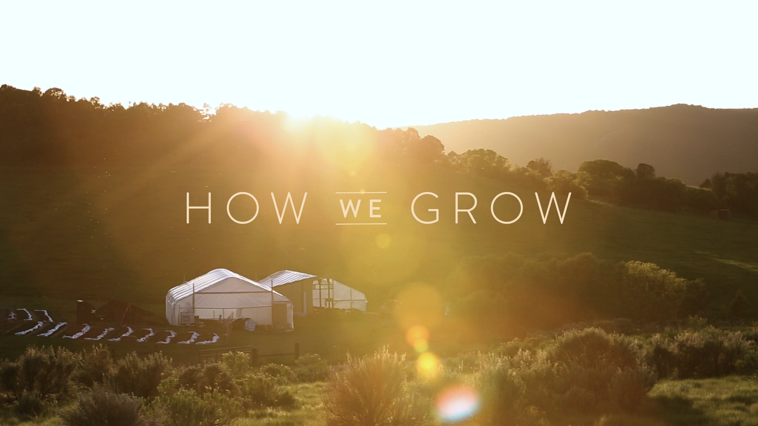 Thank you to our Kickstarter community for helping us finish this impactful film. HOW WE GROW is about community and was supported by our community.
