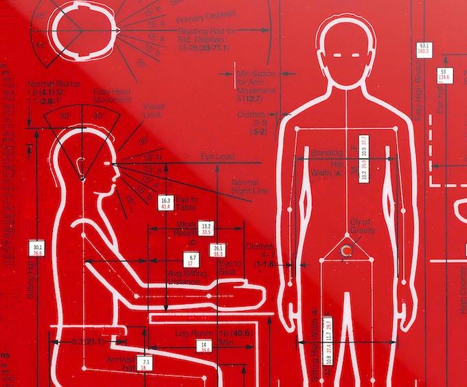 Selector 1a. Body Measurements